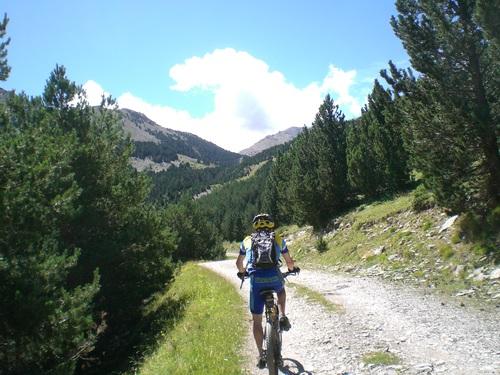 http://cimvalencia.es/CIMteractivo/images/CIM/2011/334507.jpg
